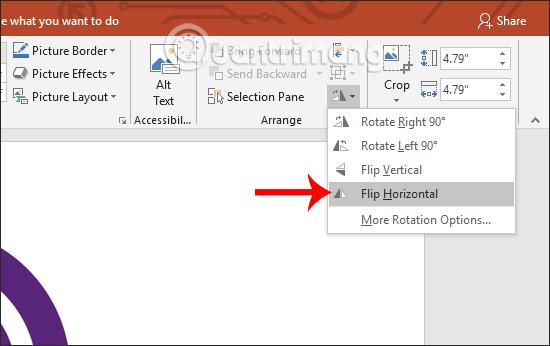 Cách lật, xoay hình ảnh trên PowerPoint - Ảnh minh hoạ 2