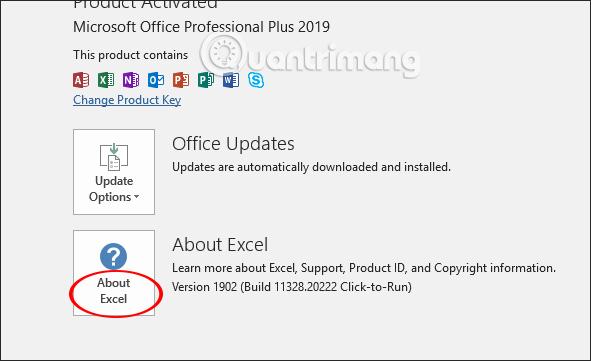 Cách kiểm tra phiên bản Excel đang sử dụng - Ảnh minh hoạ 10