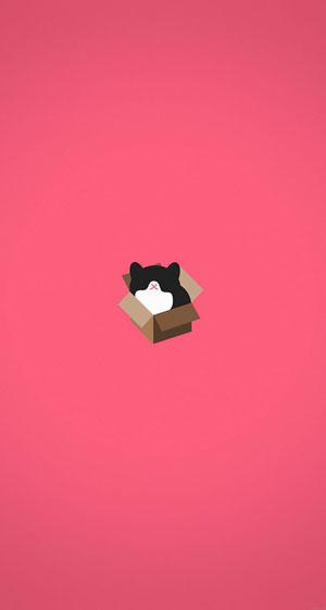 Hình nền mèo cute 11