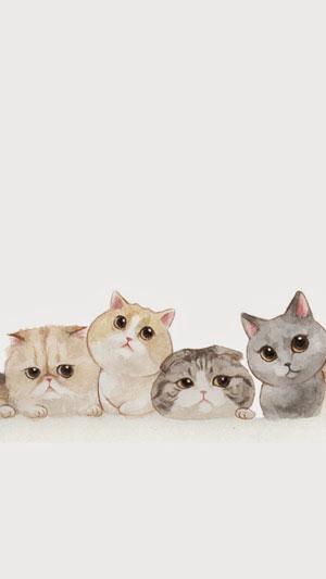 Hình nền mèo cute 14