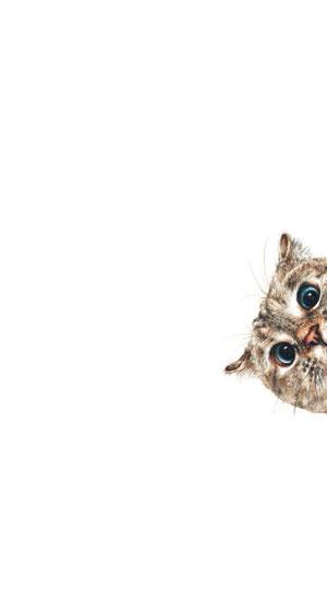Hình nền mèo cute 18