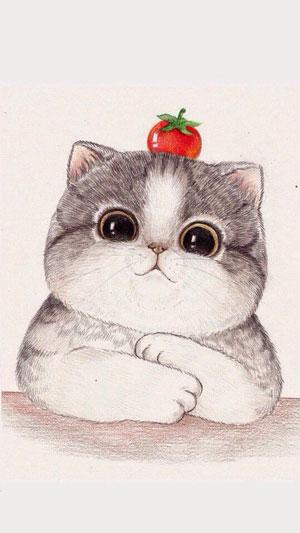 Hình nền mèo cute 4