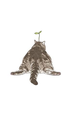 Hình nền mèo cute 9