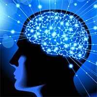 Bạn sở hữu loại trí thông minh nào?