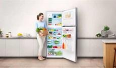 Cách điều chỉnh nhiệt độ tủ lạnh Samsung, Sharp, Panasonic, Toshiba, LG