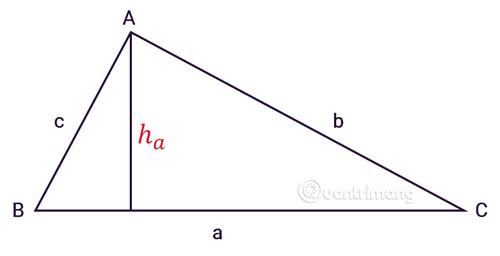 Tính diện tích tam giác thường
