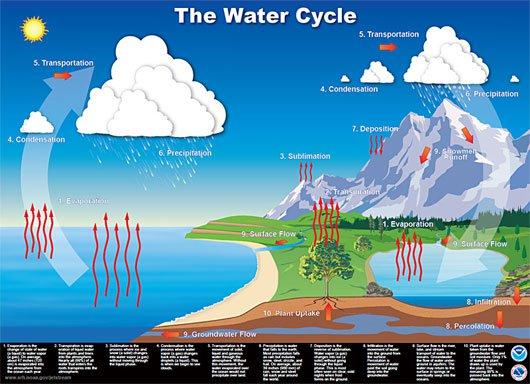 Vòng tuần hoàn của nước