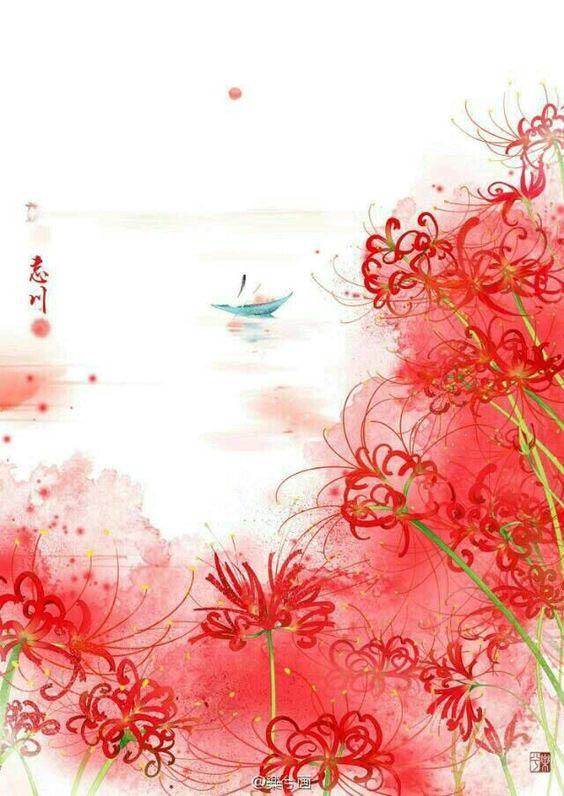 Hình ảnh hoa bỉ ngạn - Tình yêu không trọn vẹn 32