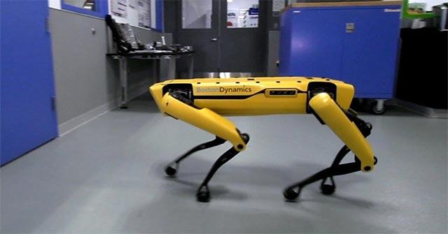 Chú chó robot giúp việc phức tạp nhất thế giới sẽ được ra mắt vào cuối năm nay