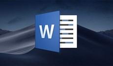Cách chèn dấu ngoặc trong Word, Excel