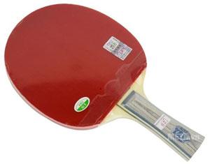 vợt bóng bàn Hà nội