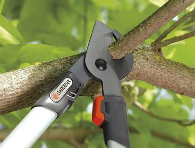Kéo cắt cành trên cao là dụng cụ không thể thiếu trong chăm sóc cây cối.