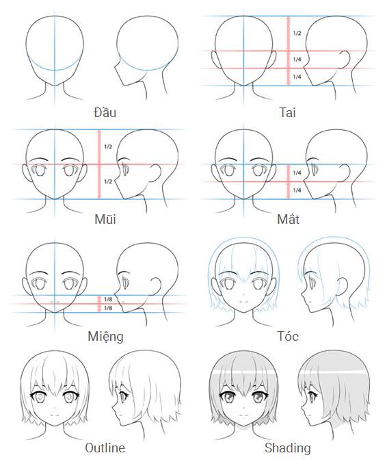 Các bước vẽ đầu và khuôn mặt nhân vật nữ anime