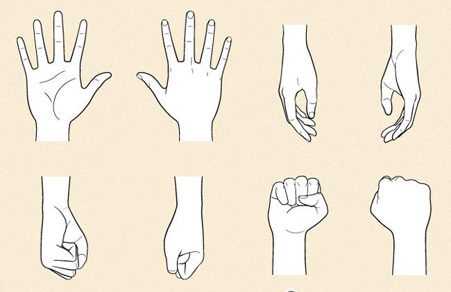 Vẽ lòng bàn tay và ngón cái