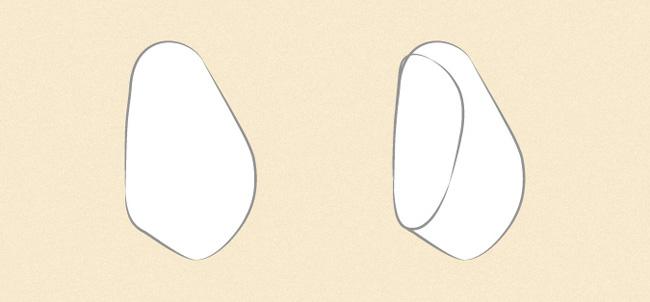 Vẽ tỷ lệ lòng bàn tay và các ngón tay đang nắm lại ở góc nhìn một bên