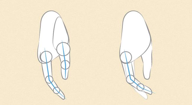 Vẽ nốt ngón nhẫn và ngón út để hoàn thiện