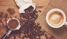 Top 5 máy pha cà phê từ hạt được ưa chuộng nhất hiện nay