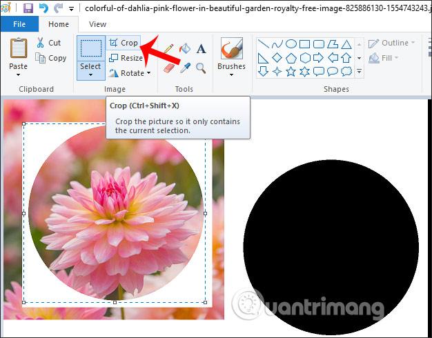 Cách cắt ảnh hình tròn trên Paint - Quantrimang com