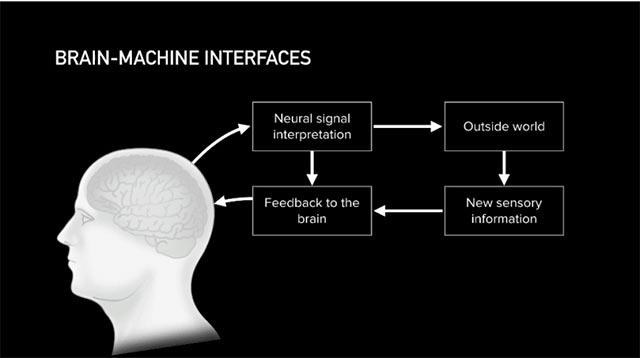 Sơ đồ giao diện hệ thống kết nối não bộ với máy tính