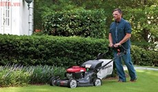Top 10 máy cắt cỏ được ưa chuộng nhất hiện nay