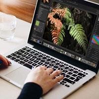 Cách sử dụng Darktable, công cụ miễn phí thay thế Adobe Lightroom