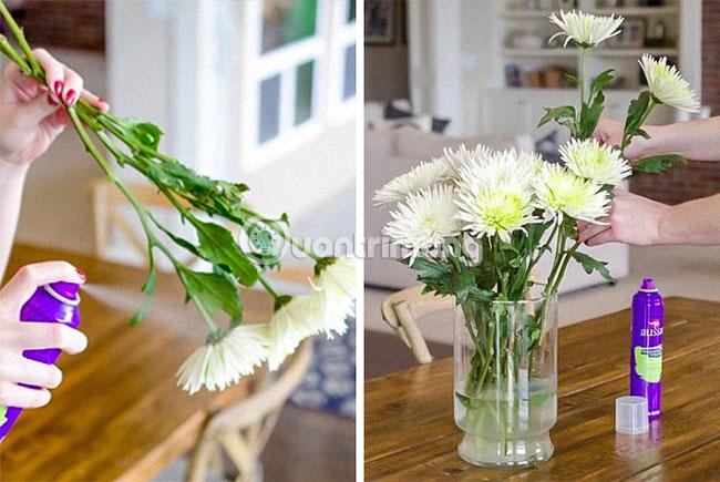 Làm cho hoa tươi lâu hơn