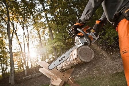 Máy cưa gỗ có rất nhiều loại để đáp ứng việc xử lý các loại gỗ khác nhau.