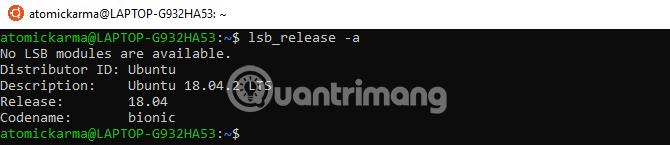Chạy lệnh lsb_release -a
