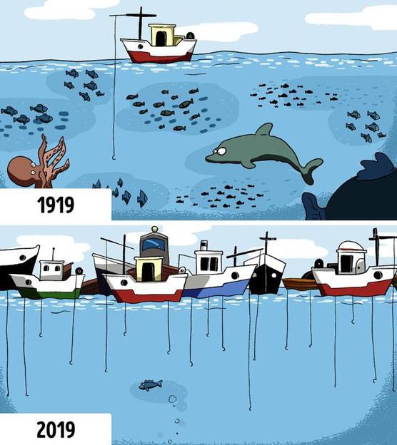 Con người đang phải gánh chịu hậu quả do chính mình gây ra khi khai thác cạn kiệt tài nguyên sinh vật biển