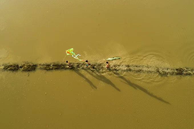 """Trẻ em """"chạy mồi"""" thả diều trên cánh đồng mùa vào ngập nước ở Đồng bằng sông Cửu Long"""