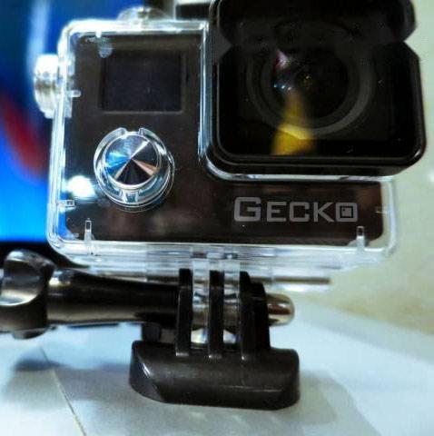 GECKO S1