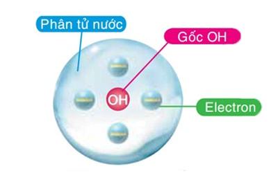 Cấu trúc hạt NanoE