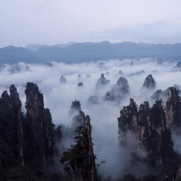 Khung cảnh hùng vĩ của những trụ sa thạch vươn lên từ tầng rừng của công viên Trương Gia Giới 5
