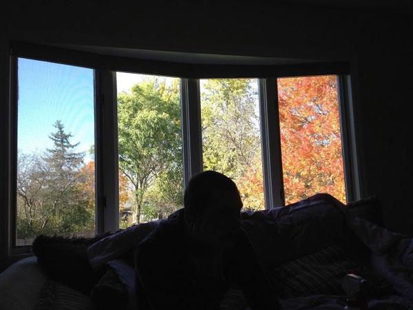 Xuân, Hạ, Thu, Đông cùng xuất hiện qua các khe cửa sổ