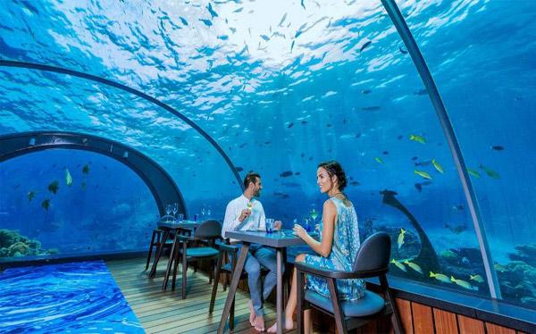 Thưởng thức những ly cocktail tại nhà hàng, quán bar dưới đáy biển
