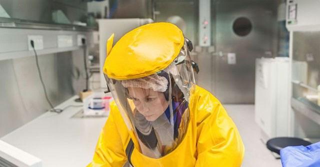 Để chuẩn bị cho Olympic Tokyo 2020, Nhật Bản nhập khẩu virus Ebola và 4 mầm bệnh sốt xuất huyết nguy hiểm nhất