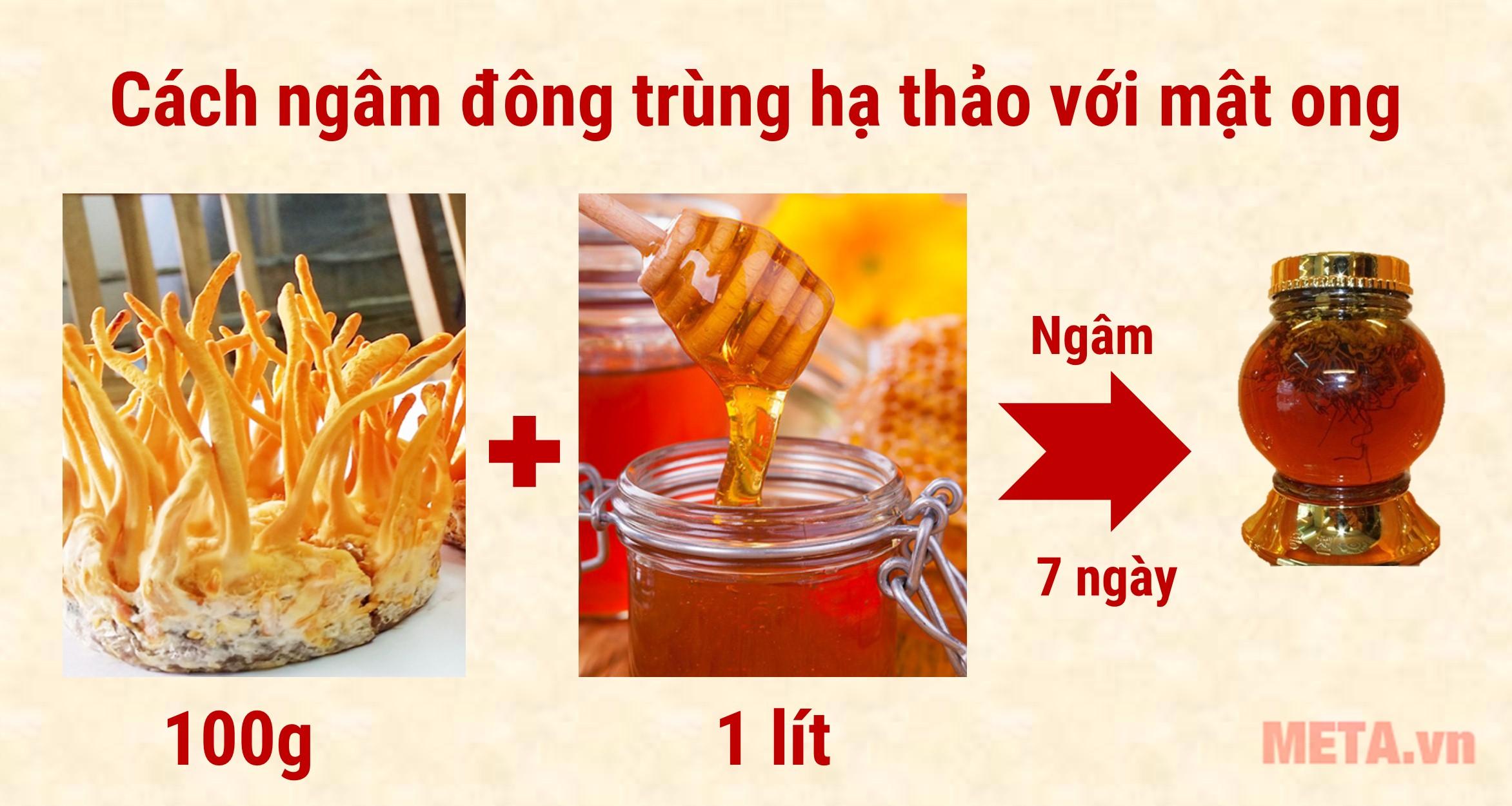 Cách ngâm mật ong đông trùng hạ thảo