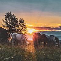 45 hình nền phong cảnh tuyệt đẹp, độ phân giải cao