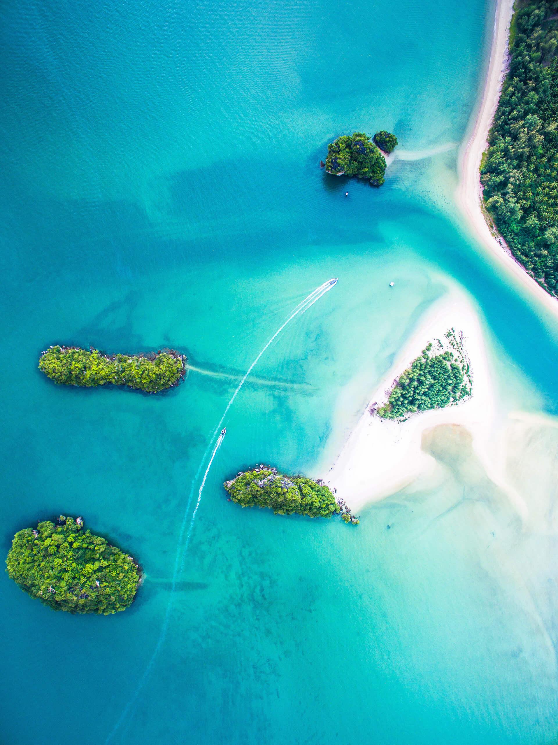 Những hòn đảo trong ánh mắt của chú chim