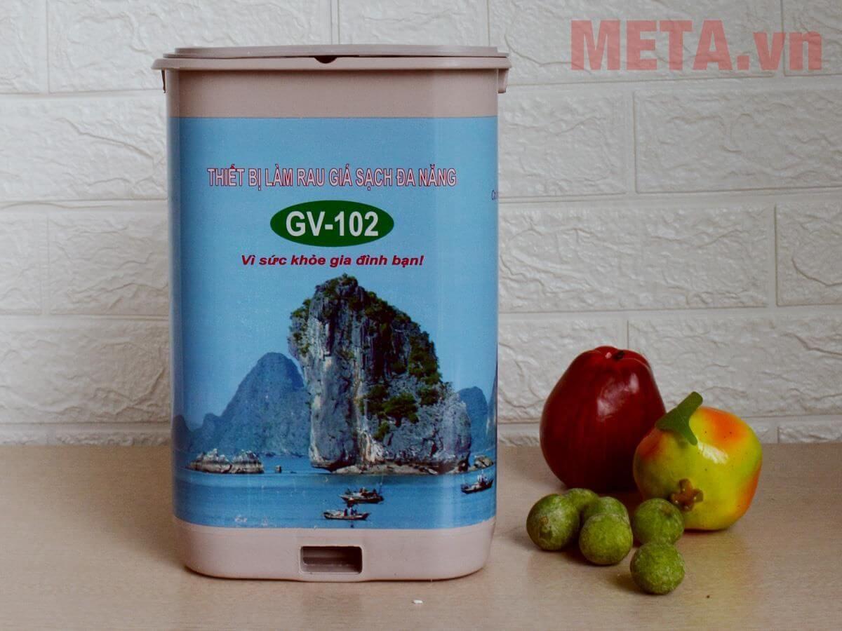 Máy làm giá đỗ GV 102 có những loại nào? Nên mua loại nào tốt?