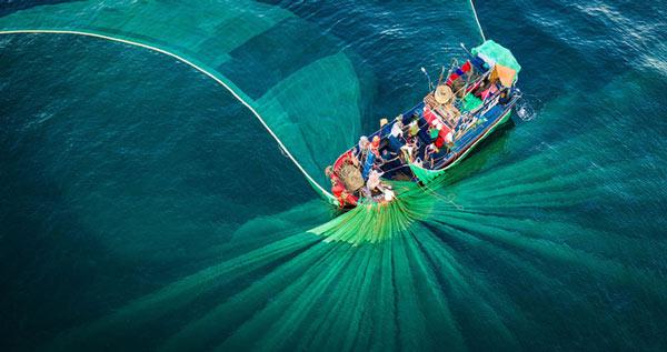 """Bức ảnh """"Vũ điệu của lưới"""" chụp vào tháng 7 tại Hòn Yến, huyện Tuy An, tỉnh Phú Yên do tác giả Nguyễn Ngọc Thiện"""