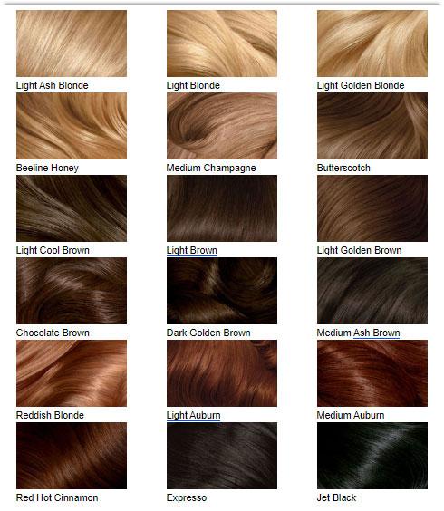 Bảng màu tóc của Clairol's Perfect 10