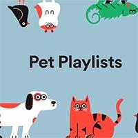 Cách tạo danh sách phát nhạc cho thú cưng trên Spotify