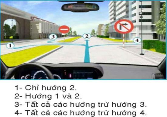 Câu hỏi 30: Người lái xe điều khiển cho xe chạy theo hướng nào là đúng quy tắc giao thông?