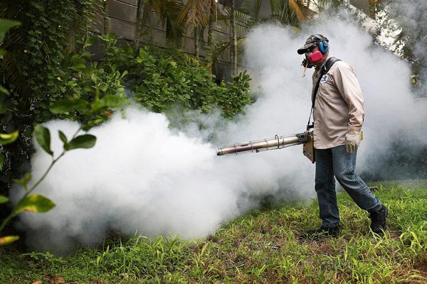 Máy phun khói có thể luồn sâu vào lùm cây kẽ lá