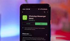 Cách bật Dark Mode cho WhatsApp trên Android, Web