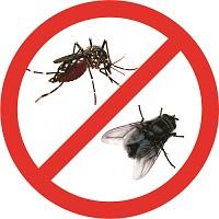 Cách đuổi muỗi, diệt muỗi trong phòng ngủ hiệu quả, không độc hại