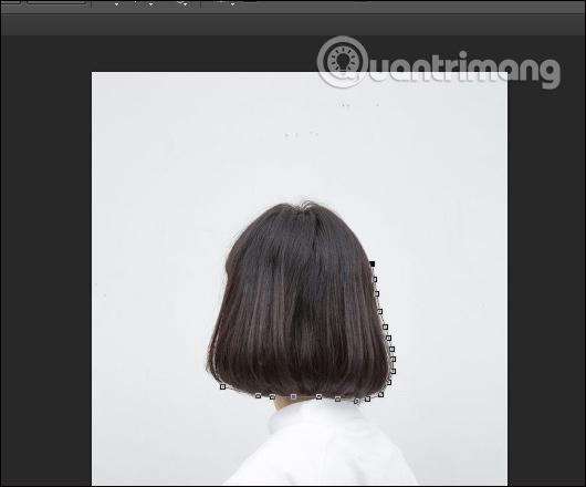 Khoanh vùng màu tóc