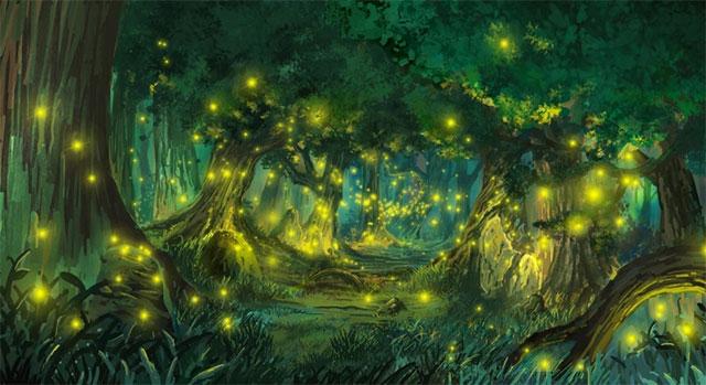 Khu rừng đom đóm