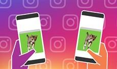 Cách xem ảnh, video cùng bạn bè trên Instagram